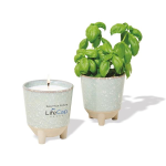 Modern Sprout Glow & Grow Live Well Gift Set